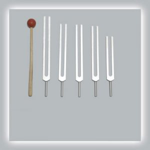 Brain Tuning Fork Set Standard