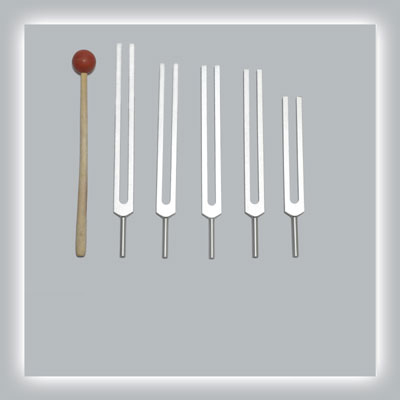 Brain Tuning Fork Set Standard